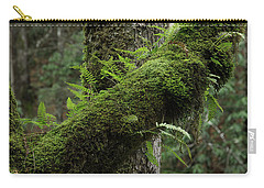 Carry-all Pouch featuring the photograph In The Cool Of The Forest by Mike Eingle