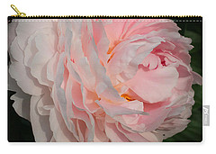 In The Evening Sun Carry-all Pouch by Jutta Maria Pusl