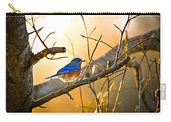 In The Light Carry-all Pouch by Shelby  Young