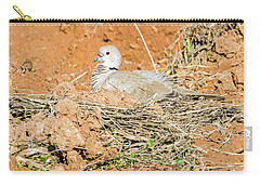 Carry-all Pouch featuring the photograph Eurasian Collared Dove On Nest by Tam Ryan