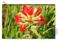 Indian Paintbrush Close Up Carry-all Pouch