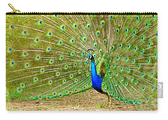 Indian Peacock Carry-all Pouch by Dan Miller
