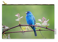 Indigo Bunting Perched Carry-all Pouch by Bill Wakeley