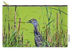 Inmature Black Crowned Heron. Carry-all Pouch