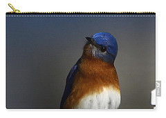 Inquisitive Bluebird Carry-all Pouch
