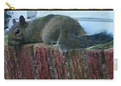 Carry-all Pouch featuring the photograph Inquisitor Visitor by Denise Fulmer