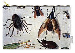 Insects, 1660 Carry-all Pouch