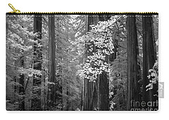 Carry-all Pouch featuring the photograph Inside The Groves Of The Redwoods by Craig J Satterlee