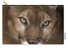 Intense Cougar Carry-all Pouch