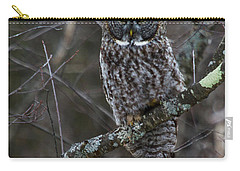 Intensity - Great Gray Owl Carry-all Pouch
