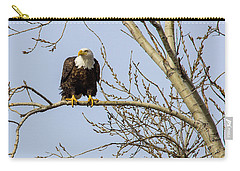Intent Bald Eagle Carry-all Pouch