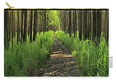Carry-all Pouch featuring the photograph Into The Forest I Go by DJ Florek