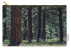 Carry-all Pouch featuring the photograph Into The Light There Be Shadows by Gaelyn Olmsted