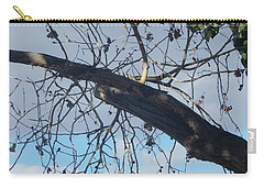 Tree Leaves Into The Sky Carry-all Pouch
