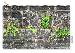Carry-all Pouch featuring the photograph Intrepid Ferns by Kim Nelson