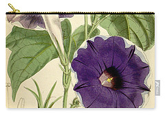 Ipomoea Nil Carry-all Pouch by Joseph Dalton Hooker