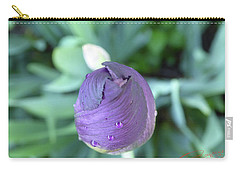 Iris After The Rain V Carry-all Pouch