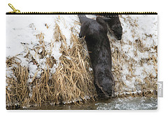 Is It Cold Carry-all Pouch