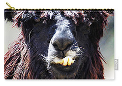 Carry-all Pouch featuring the photograph Is Your Mama A Llama? by Anthony Jones