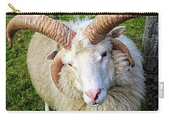 Islandic Sheep With Two Sets Of Horns Carry-all Pouch by Allan Levin