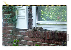 Carry-all Pouch featuring the photograph It Is Cool Here In The Shade by Denise Fulmer