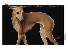 Italian Greyhound Dog Standing  Isolated Carry-all Pouch by Sergey Taran