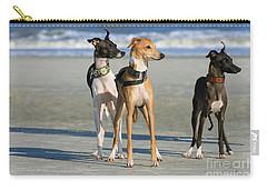 Italian Greyhounds On The Beach Carry-all Pouch