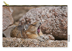 Carry-all Pouch featuring the photograph It's Been A Long Day by Gary Lengyel