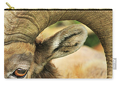 I've Got An Eye On You Carry-all Pouch