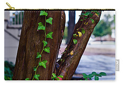 Ivy In Williamsburg Carry-all Pouch