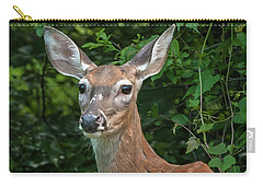 Ivy League Doe Carry-all Pouch by Jim Moore