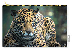 Carry-all Pouch featuring the photograph Jaguar by Lisa L Silva