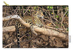 Jaguar In Repose Carry-all Pouch