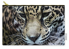Jaguar Up Close Carry-all Pouch