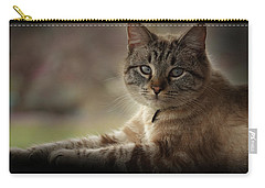 Carry-all Pouch featuring the photograph Jaspurr by Kim Henderson