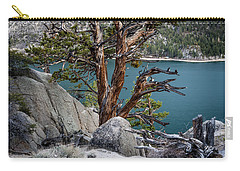June Lake Juniper Carry-all Pouch by Cat Connor