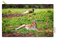 Carry-all Pouch featuring the photograph Just Chillin, Yanchep National Park by Dave Catley