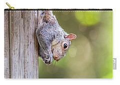 Just Hanging Around Carry-all Pouch