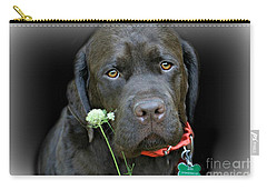 Carry-all Pouch featuring the photograph Just Jack by Barbara S Nickerson