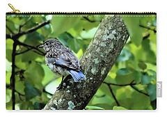 Juvenile Bluebird Carry-all Pouch
