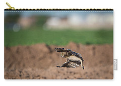 Juvenile Burrowing Owl Testing Out His Wings Carry-all Pouch