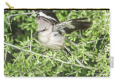 Juvenile Mockingbird With Crossbill Carry-all Pouch