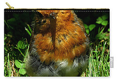 Juvenile Robin 2 Carry-all Pouch by John Topman