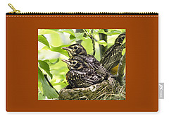 Juvenile Robins Just Prior To Fledging Carry-all Pouch
