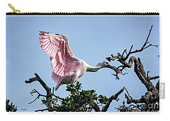 Juvenile Roseate Spoonbill Readying Its Wings Carry-all Pouch