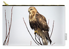 Juvenile Rough-legged Hawk  Carry-all Pouch by Ricky L Jones