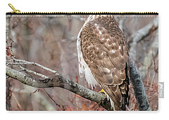 Juvenile Sharp-shinned Hawk Carry-all Pouch