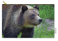 Juvie Grizzly Carry-all Pouch