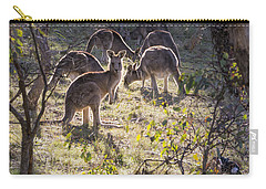 Kangaroos And Magpies - Canberra - Australia Carry-all Pouch