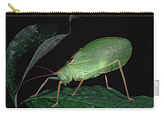 Katydid At Night Carry-all Pouch